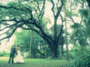 Jacksonville Wedding Video Film – Jessica + Nathan